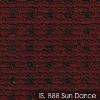 Spring-IS-888-SUN-DANCE-506