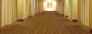 Wilton Stripes Line-content_334_sllarge
